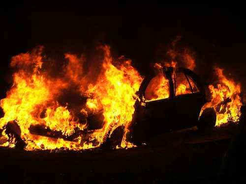 Причины лесных пожаров, их влияние на экологию и человека 6