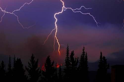 Причины лесных пожаров, их влияние на экологию и человека 8