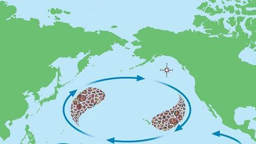 Причины появления большого тихоокеанского мусорного пятна 2
