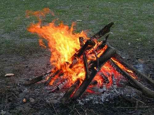Основной причиной возникновения лесных пожаров является