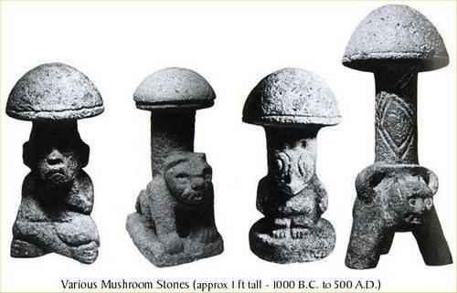 Галлюциногенные грибы: история, психоактивные вещества и влияние на человека 3