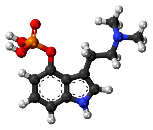 Галлюциногенные грибы: история, психоактивные вещества и влияние на человека 4