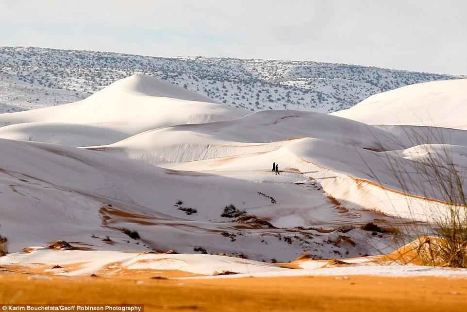 Завораживающие фото и видео снега в пустыне Сахара 3