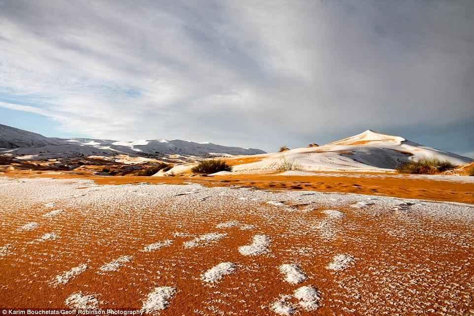Завораживающие фото и видео снега в пустыне Сахара 5