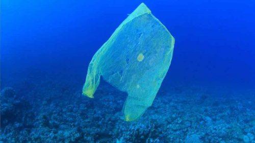Глобальные проблемы Мирового океана и пути их решения 3