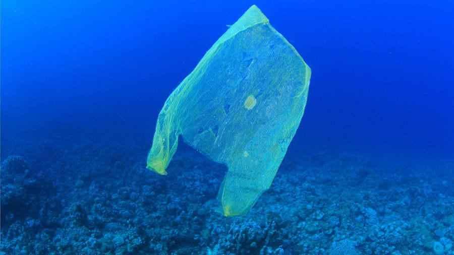 Война с пластиковым загрязнением набирает оборотов 4