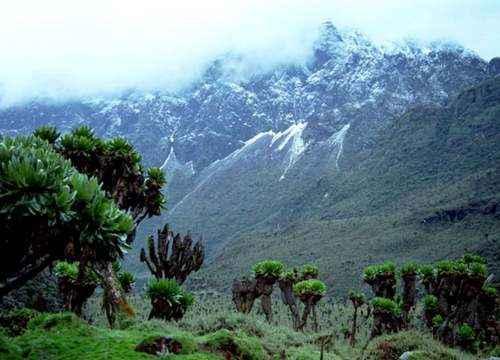 ТОП 10 крупнейших горных вершин Африки - высота, характеристика и фото 6