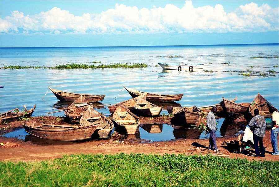 Реки и озёра Африки на карте — задание. География, 7 класс.