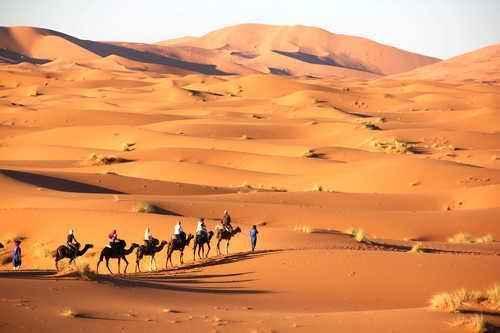 Какие пустыни есть в африке