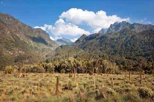 ТОП 10 крупнейших горных вершин Африки - высота, характеристика и фото 5