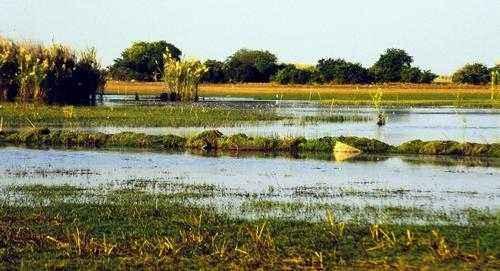 ТОП 10 самых больших озер Африки - названия, фото, площадь, размеры, глубина и расположение 4