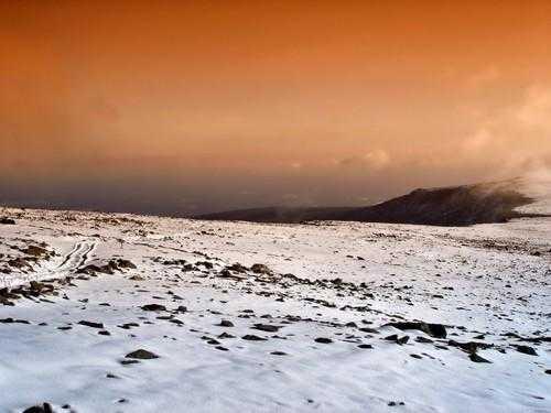 Зона пустынь и полупустынь России: где находится, карта, климат, флора и фауна 6