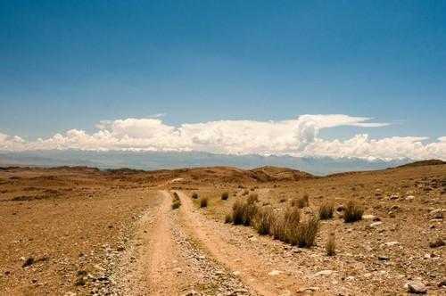Зона пустынь и полупустынь России: где находится, карта, климат, флора и фауна 3