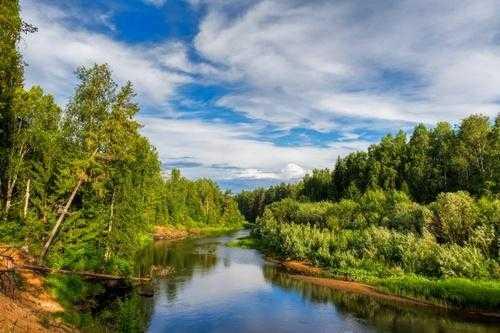 Природные зоны России: карта, названия, географическая характеристика и таблица 6