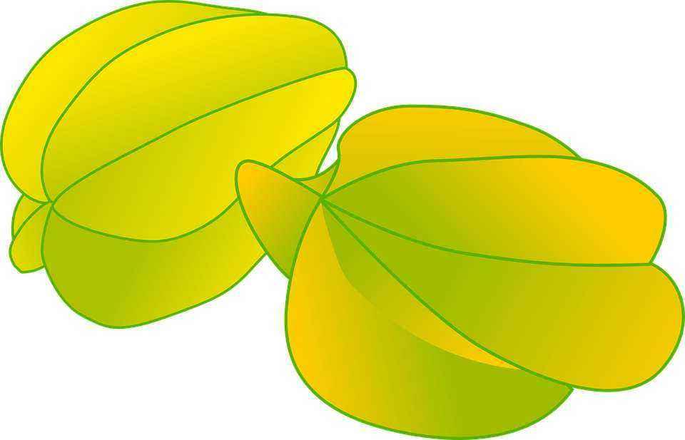 Детские картинки фруктов с названиями 17
