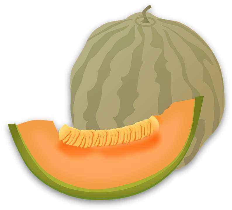 Детские картинки фруктов с названиями 15