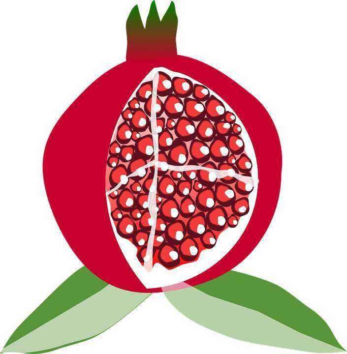 Детские картинки фруктов с названиями 11