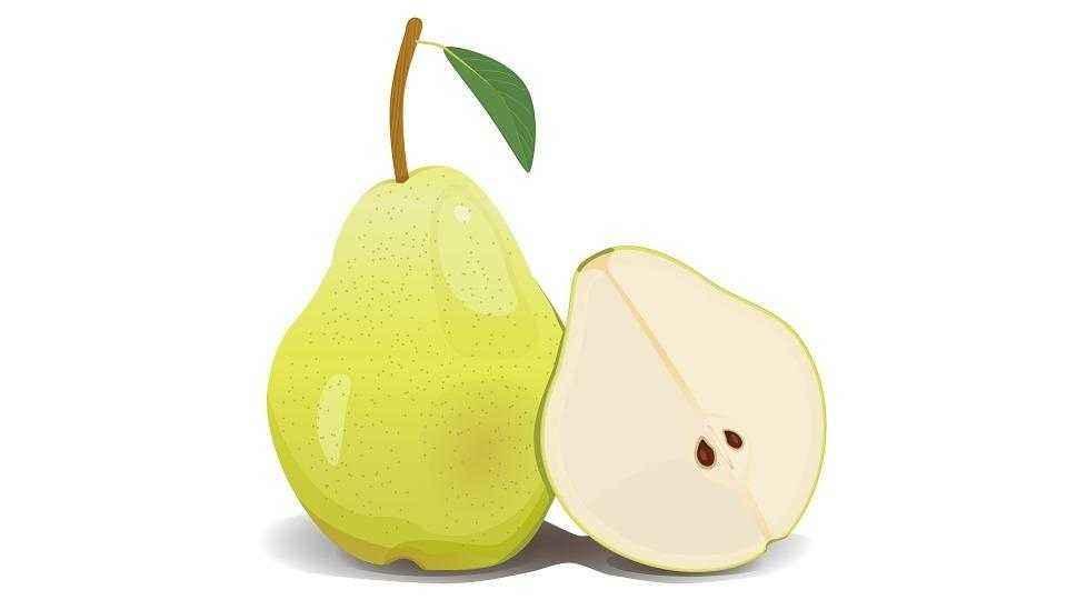 Детские картинки фруктов с названиями 13