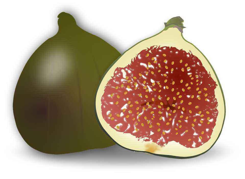 Детские картинки фруктов с названиями 16
