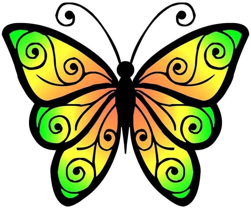 Цветные картинки бабочек для детей | Природа Мира