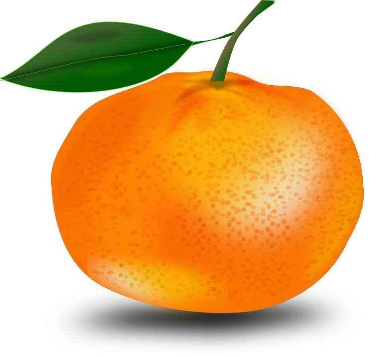 Детские картинки фруктов с названиями 22