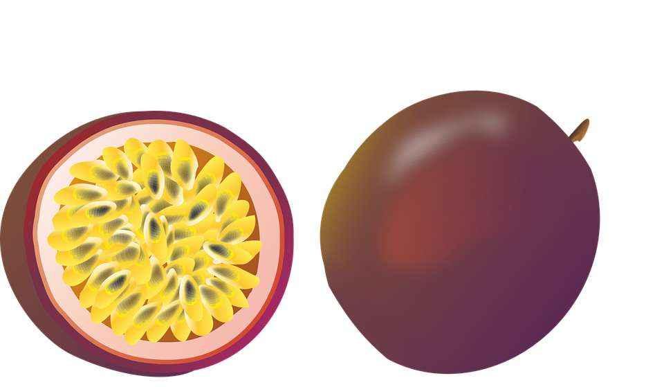 Детские картинки фруктов с названиями 23