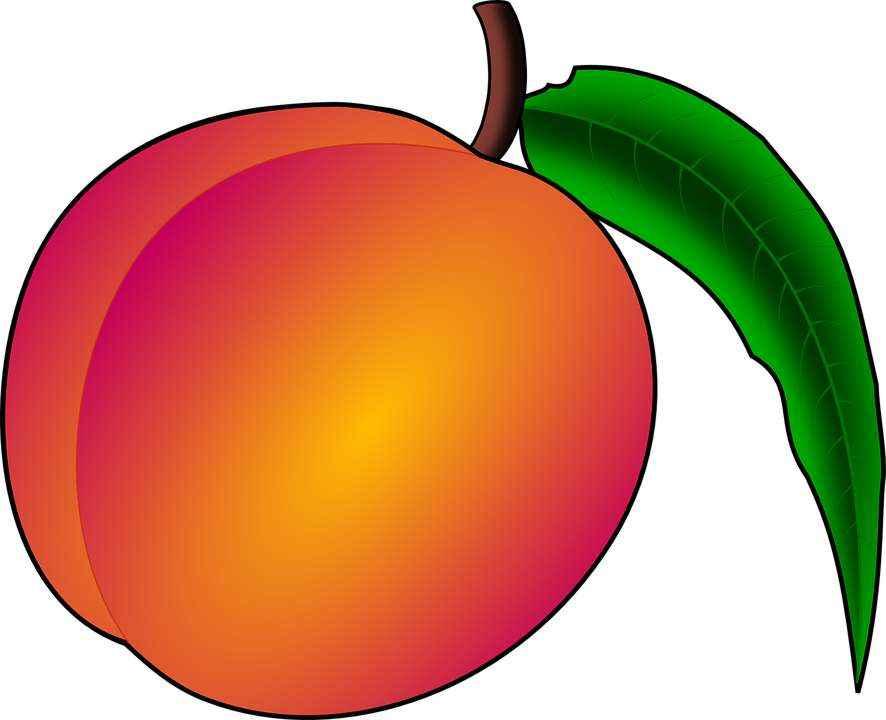 Детские картинки фруктов с названиями 25