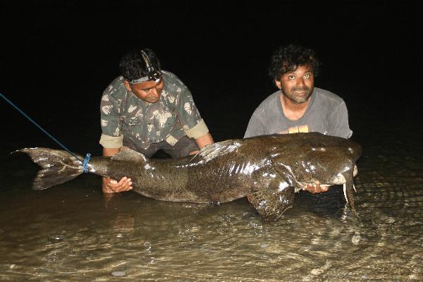 ТОП-16 смертоносных и ядовитых рыб на Земле 9