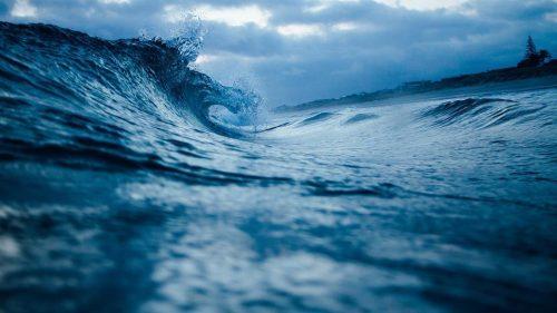 Ресурсы Мирового океана - виды, краткая характеристика и проблемы использования 5