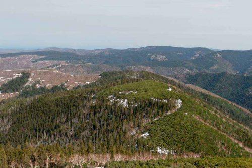 Какие крупные природные комплексы выделяют на территории России? 8