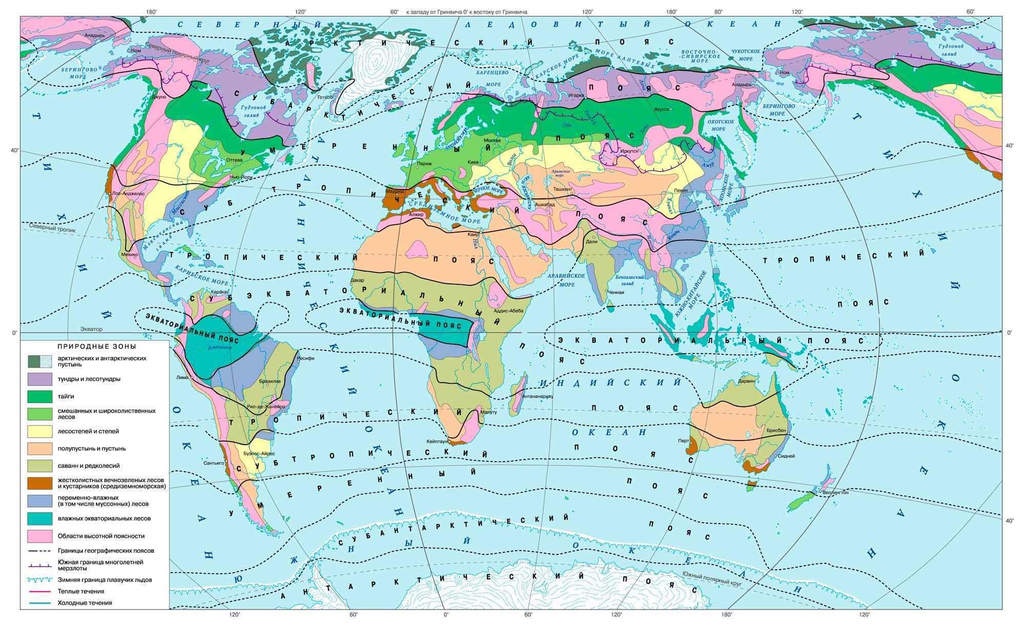 Природные зоны Земли: карта, список, характеристика и фото 2