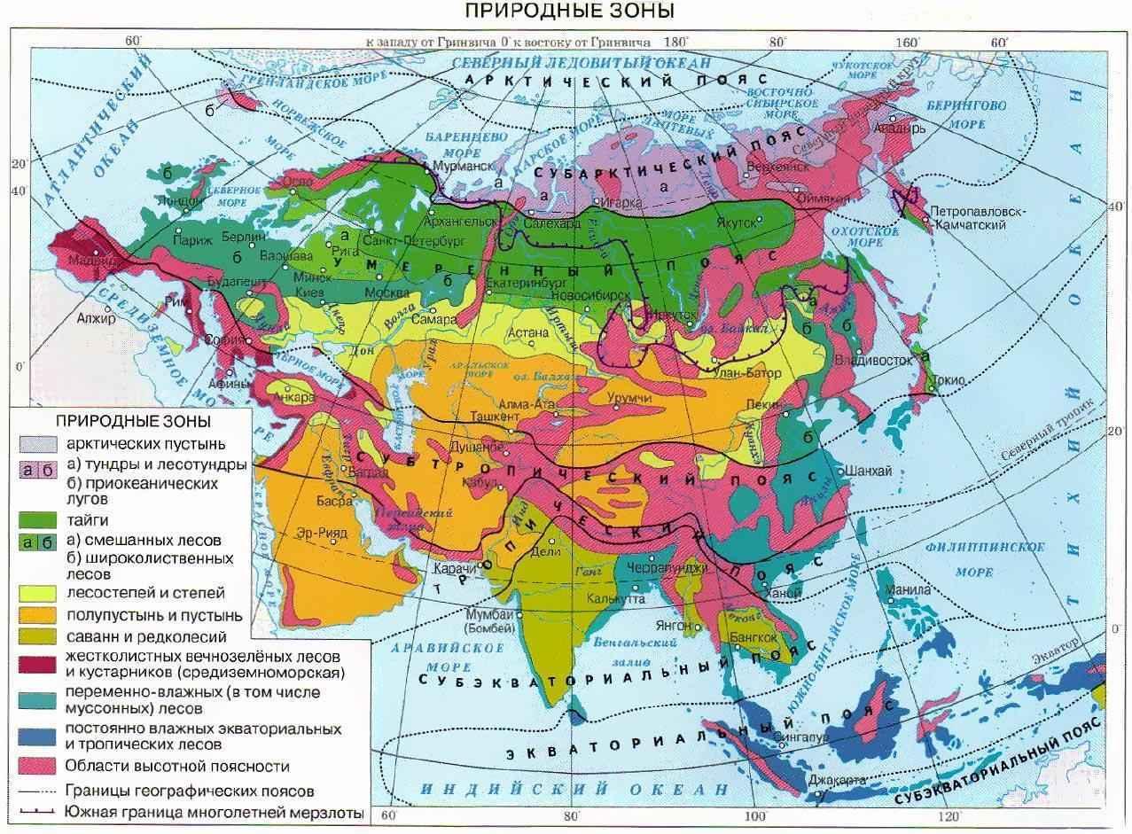 Природные Зоны Евразии: карта, названия, географическая характеристика и таблица 2