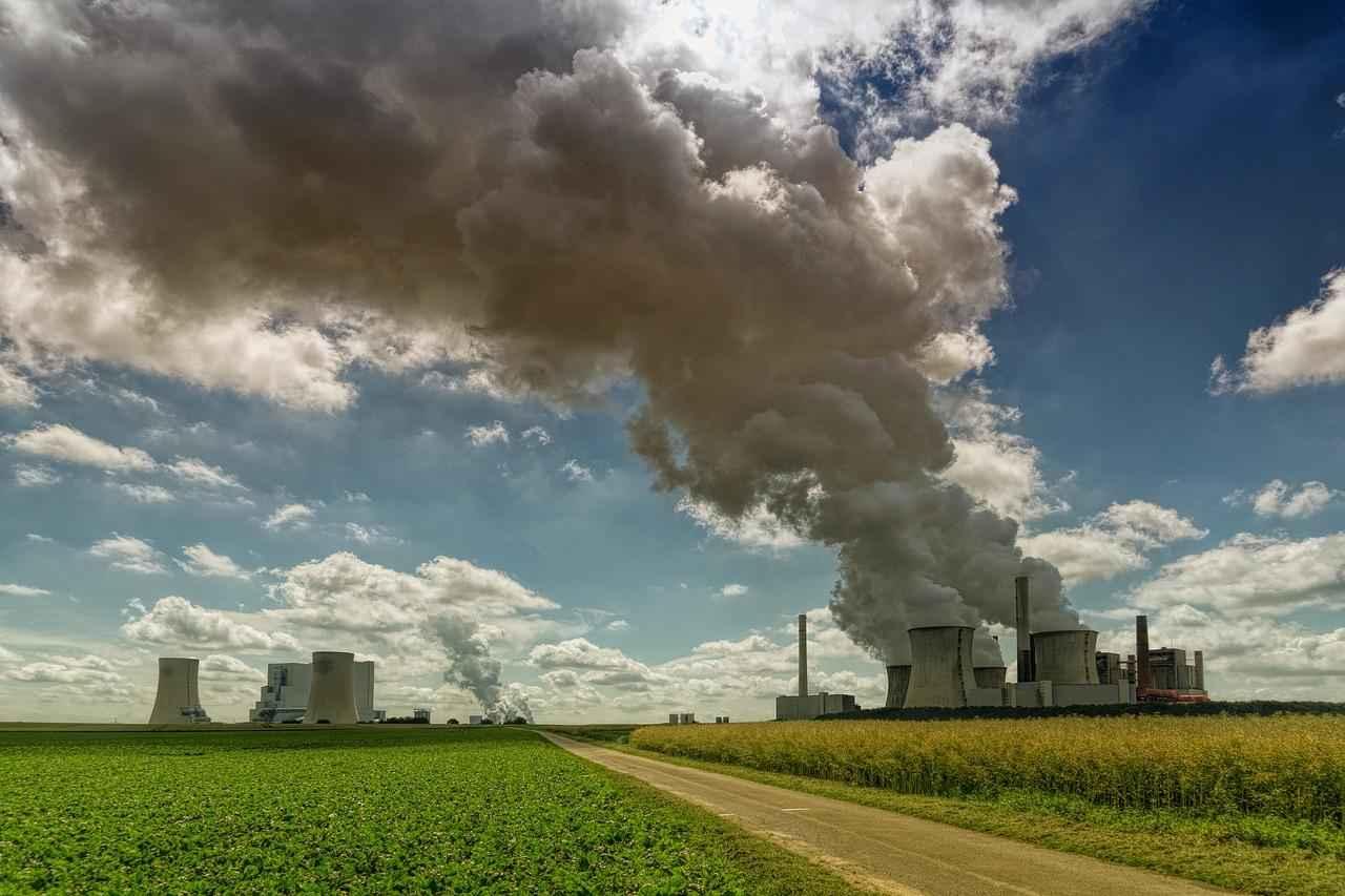 Что относится к глобальным экологическим проблемам? Список основных проблем и пути их решения 4