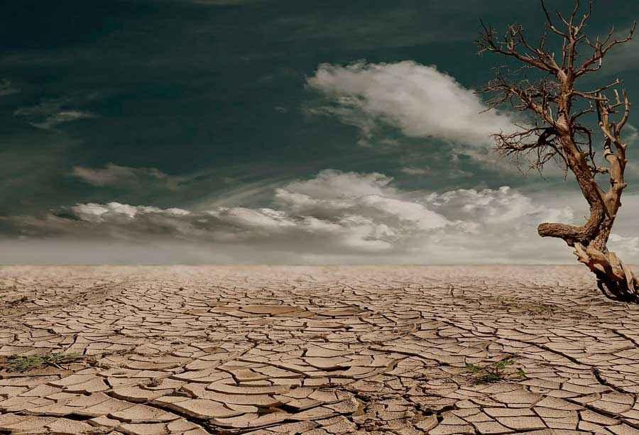 Что относится к глобальным экологическим проблемам? Список основных проблем и пути их решения 3