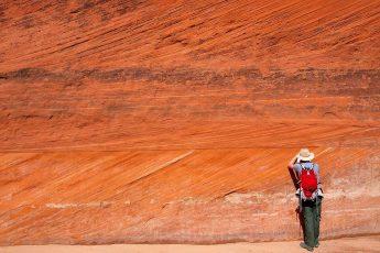 геолог, работа, порода